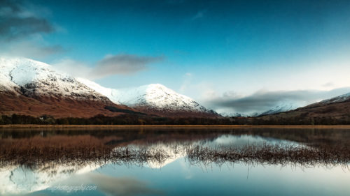 Westerley Photography Winter-Reeds-on-Loch-Awe
